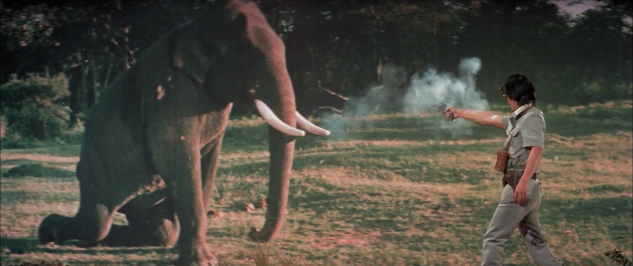 Bang bang elephant, you're dead! Second sample of atrocious chroma key compositing.